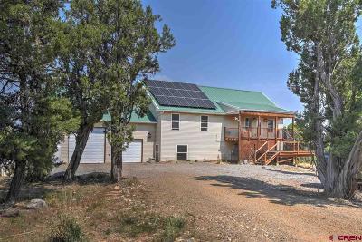 Ignacio Single Family Home For Sale: 730 Blackhawk Trail