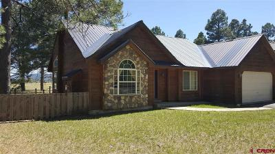 Pagosa Springs Single Family Home UC/Contingent/Call LB: 628 Cloud Cap Avenue