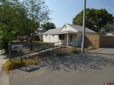 Montrose Single Family Home UC/Contingent/Call LB: 620 S Park