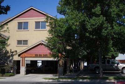 La Plata County Condo/Townhouse For Sale: 315 E 8th Avenue #203
