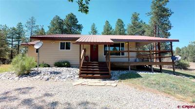 La Plata County Single Family Home For Sale: 7484 County Road 502