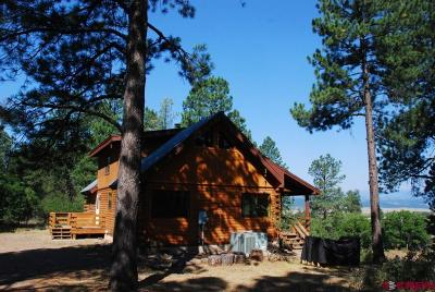 Pagosa Springs Single Family Home For Sale: 199 Cliffside Place