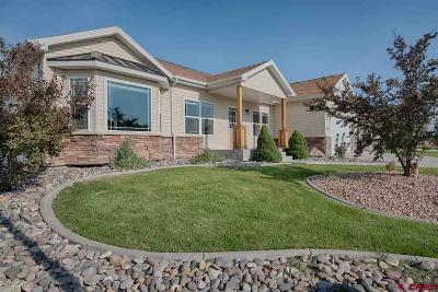 Montrose Single Family Home UC/Contingent/Call LB: 3340 Meadows Parkway