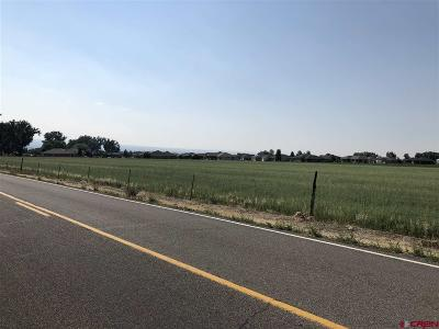 Montrose Residential Lots & Land For Sale: Miami Road