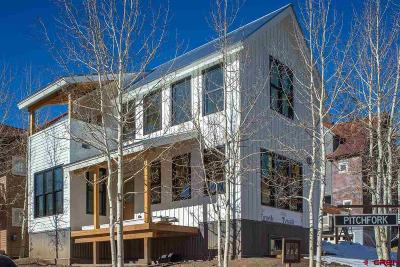 Mt. Crested Butte Single Family Home For Sale: 202 Pitchfork Drive