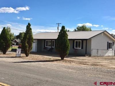 Montrose Single Family Home For Sale: 802 S Nevada Street