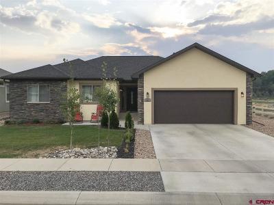 Montrose Single Family Home For Sale: 413 Alta Lakes Avenue