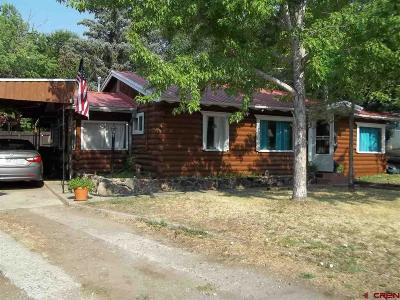 Cedaredge Single Family Home For Sale: 240 N Grand Mesa Drive