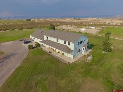Montrose Single Family Home For Sale: 67769 Osprey Lane