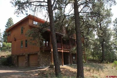 Pagosa Springs Single Family Home For Sale: 3701 Cty Rd 400
