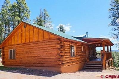 La Plata County Single Family Home UC/Contingent/Call LB: 1620 Silver Mesa Driveway