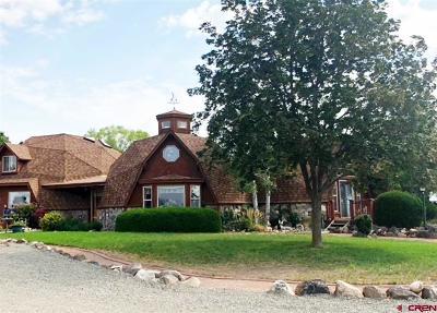 Single Family Home For Sale: 862 Cedar Drive