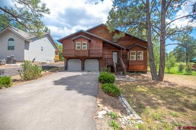 Pagosa Springs Single Family Home For Sale: 172 Handicap Avenue