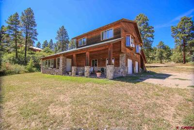 Pagosa Springs Single Family Home For Sale: 144 Harman Avenue