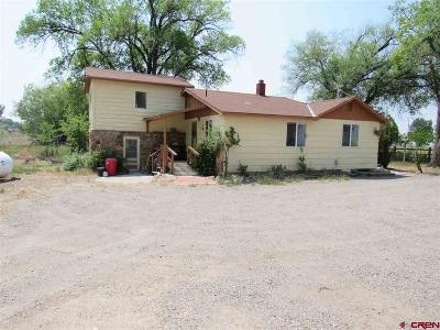 Delta Single Family Home For Sale: 1563 F-25 Road
