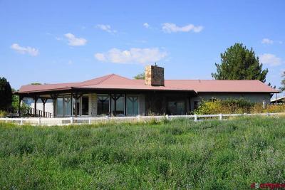 Single Family Home UC/Contingent/Call LB: 33207 J80 Road