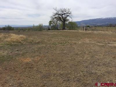 Cedaredge Commercial For Sale: 1685 S Grand Mesa Drive #Vacant L