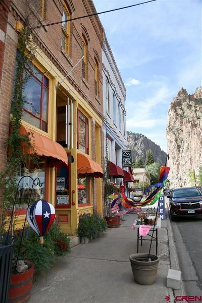 Creede Condo/Townhouse For Sale: 129 N Main Street