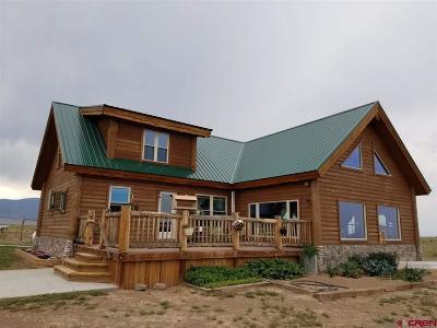 Monte Vista Single Family Home For Sale: 1855 E County Rd 12 S