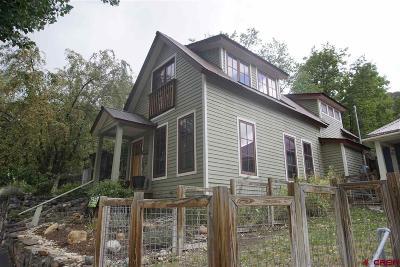 La Plata County Single Family Home For Sale: 1052 5th Avenue
