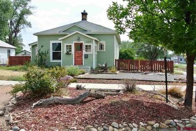 Montrose Single Family Home UC/Contingent/Call LB: 539 N Nevada