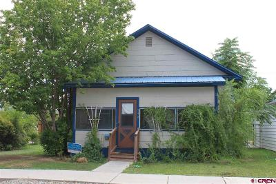 Montrose Single Family Home UC/Contingent/Call LB: 546 S 3rd Street