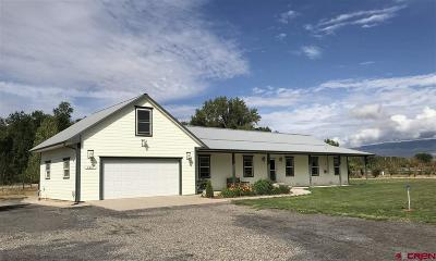 "Delta County Single Family Home UC/Contingent/Call LB: 9467 Coogan""s Bluff"