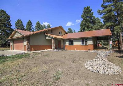Pagosa Springs Single Family Home For Sale: 121 Inspiration Drive