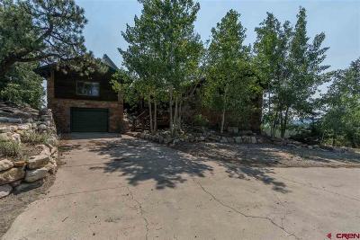 Pagosa Springs Single Family Home For Sale: 128 Usfs 628.b