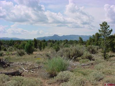 Mancos Residential Lots & Land For Sale: 14420 Road 32.1
