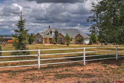 Durango Single Family Home UC/Contingent/Call LB: 104 Aloo Gobi