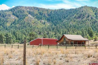 Pagosa Springs Single Family Home For Sale: 10630 County Road 700