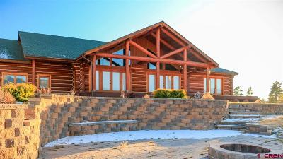 Pagosa Springs Single Family Home For Sale: 3654 County Rd. 400