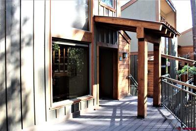Durango Condo/Townhouse For Sale: 73 S Tamarron Drive #811