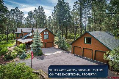La Plata County Single Family Home For Sale: 395 Lakeside