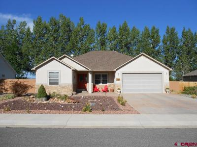 Montrose Single Family Home UC/Contingent/Call LB: 1824 American Way