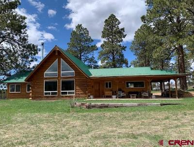 Mancos Single Family Home For Sale: 43728 Road M