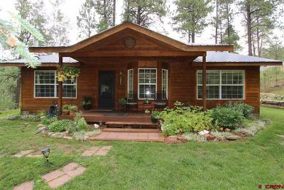Bayfield Single Family Home For Sale: 612 Alpine Forest Drive