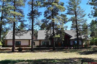 Ridgway Single Family Home For Sale: 98 Bear Cub Drive