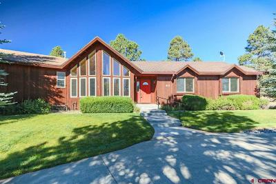 Pagosa Springs Single Family Home For Sale: 46 Hackamore Place