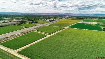 Delta CO Farm For Sale: $1,431,796