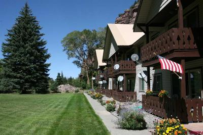 Ouray County Condo/Townhouse For Sale: 2101 Main St #B-2