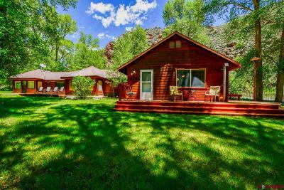Gunnison County Single Family Home For Sale: 740 County Road 20