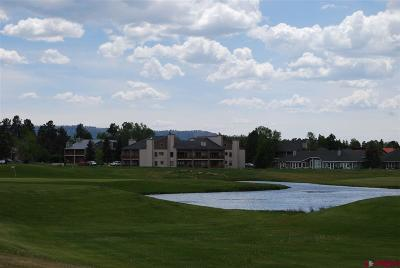 Pagosa Springs Condo/Townhouse UC/Contingent/Call LB: 89 Valley View Drive #3187