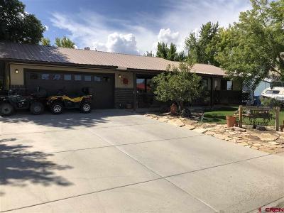 Montrose Single Family Home UC/Contingent/Call LB: 1112 Ridge
