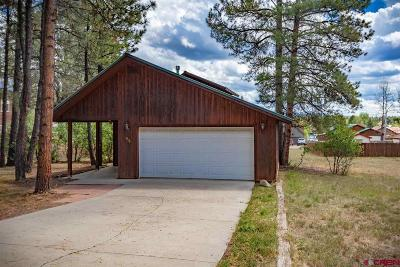 Pagosa Springs Single Family Home For Sale: 85 Dayspring