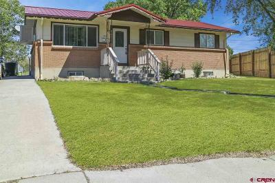Montrose Single Family Home UC/Contingent/Call LB: 313 Pine View Drive
