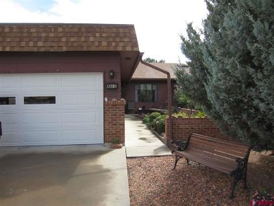 Montrose County Condo/Townhouse UC/Contingent/Call LB: 1043 Margo Ct #d