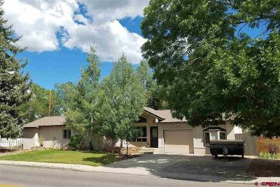 Durango Single Family Home For Sale: 120 Riverview