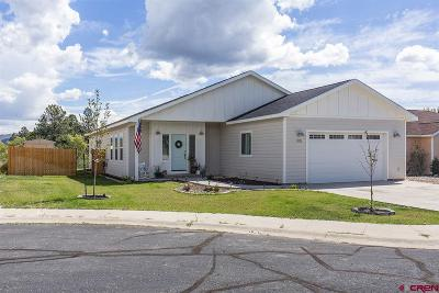 La Plata County Single Family Home For Sale: 300 Half Moon Circle